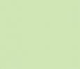 4125 light green