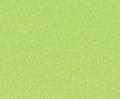 4163 lime